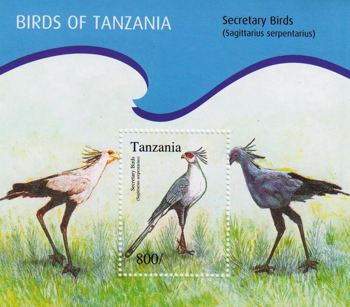 Birds of Tanzania - Secretary Birds