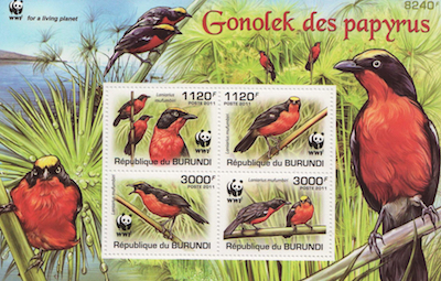 Gonolek Stamp Set